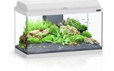 Aquarium Aquadream 60 avec Éclairage LED 52L