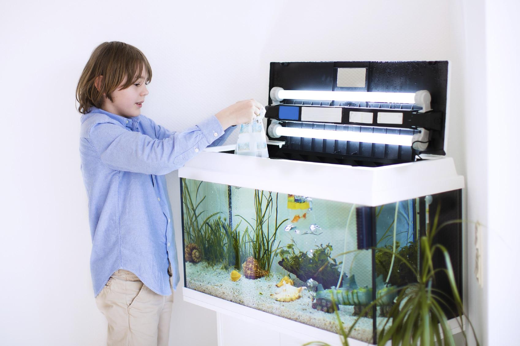 choix de votre Aquarium