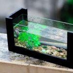 deplacer votre aquarium