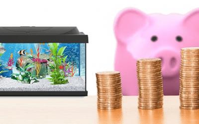 Combien coûte un Aquarium ?